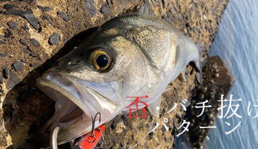 【3月】バチ抜けバターンとか関係なくシーバスを釣る!